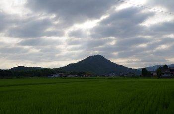 02-sasayama.jpg