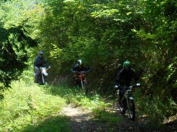 041-bike.jpg