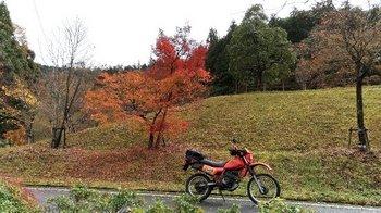 058-bike.jpg