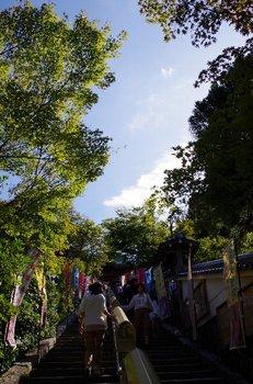 13-miyajima.jpg