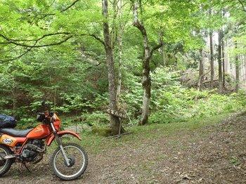 21-bike.jpg