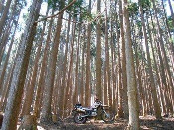 23-bike.jpg
