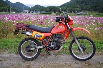 31-bike.jpg