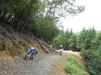34-bike.jpg