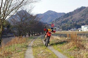 41-bike.jpg