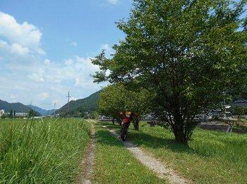 45-bike.jpg