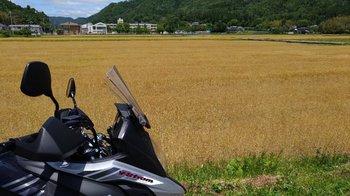 011-bike.jpg