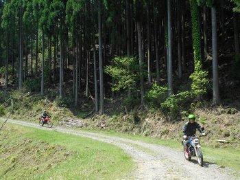026-bike.jpg