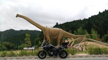 035-bike.jpg