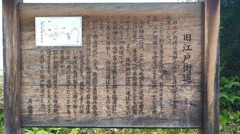 048-nomugi-touge.jpg