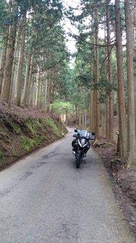 055-bike.jpg