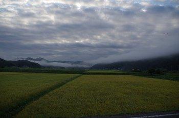 06-sasayama.jpg