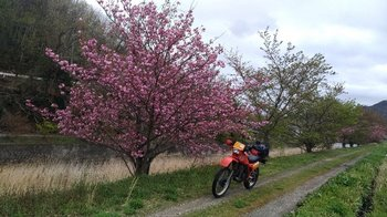061-bike.jpg