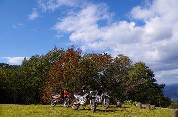 14-bike.jpg
