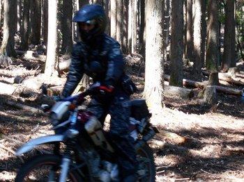 24-bike.jpg