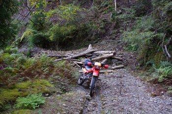 26-bike.jpg